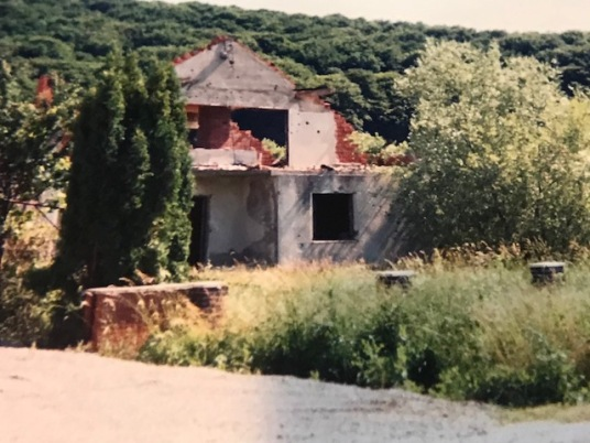 ruined house 4